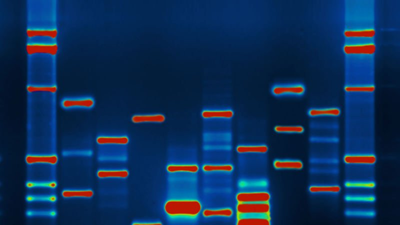 Encryption Technology Could Protect the Privacy of Your DNA https://t.co/fUsBEggoX5