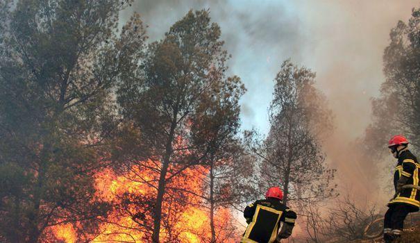 Aubagne: un incendie ravage 150 hectares de forêt https://t.co/Jkzp1hy29L