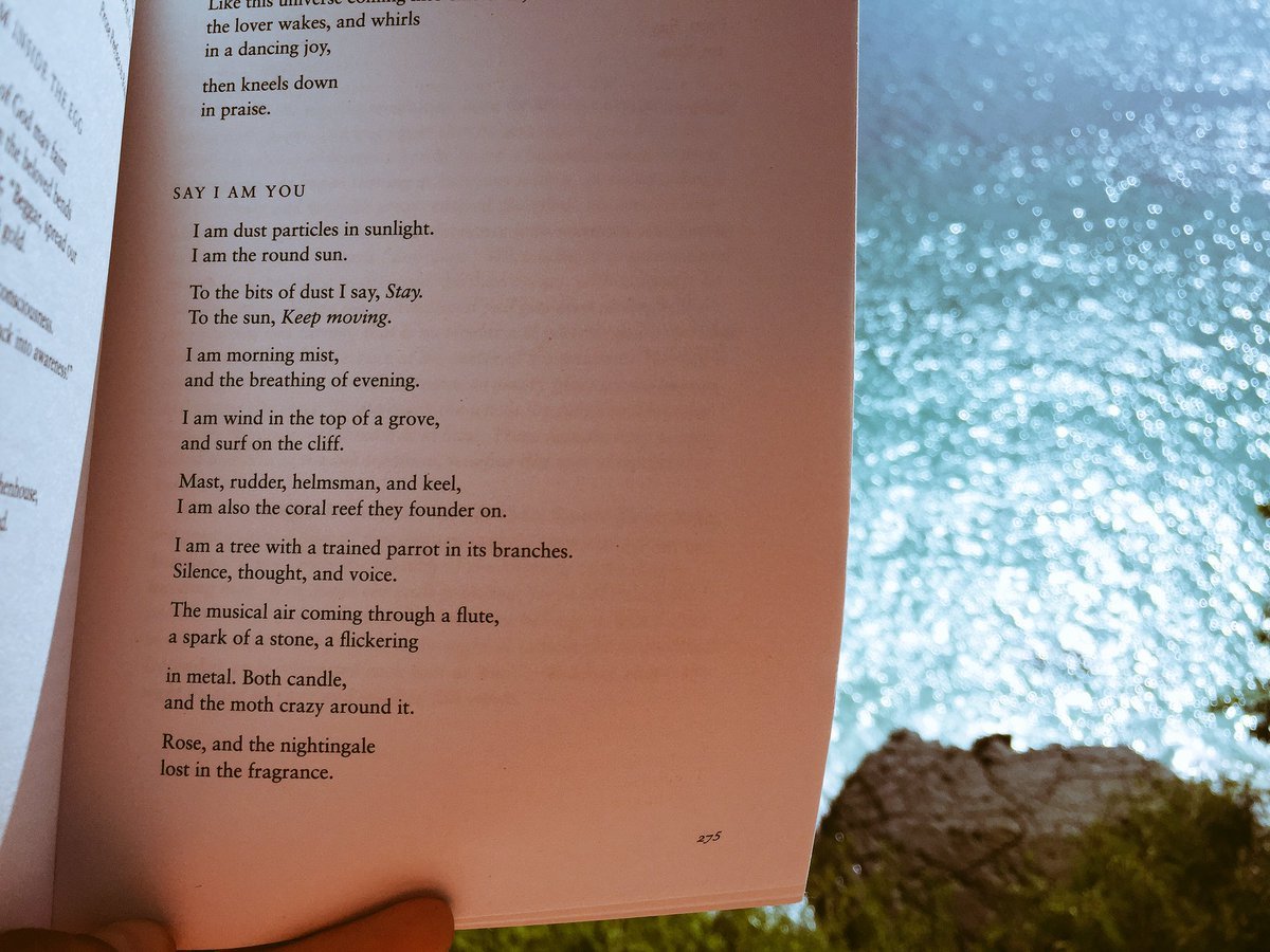Vera Graziadei On Twitter Say I Am You Rumi By The Sea
