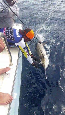 Puerto Vallarta, MX - Capt. Scott Ozuna and Team Tuna Face on Marla IV went 1-2 on Blue Marlin.
