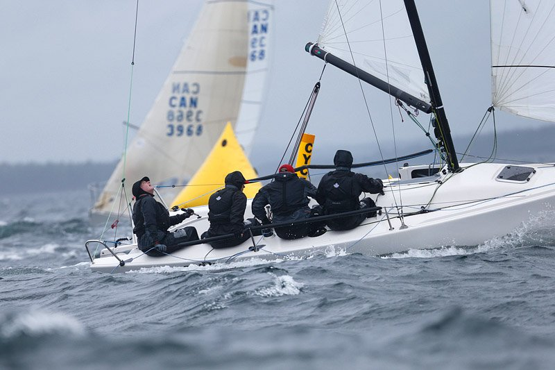 ChesterRaceWeek photo