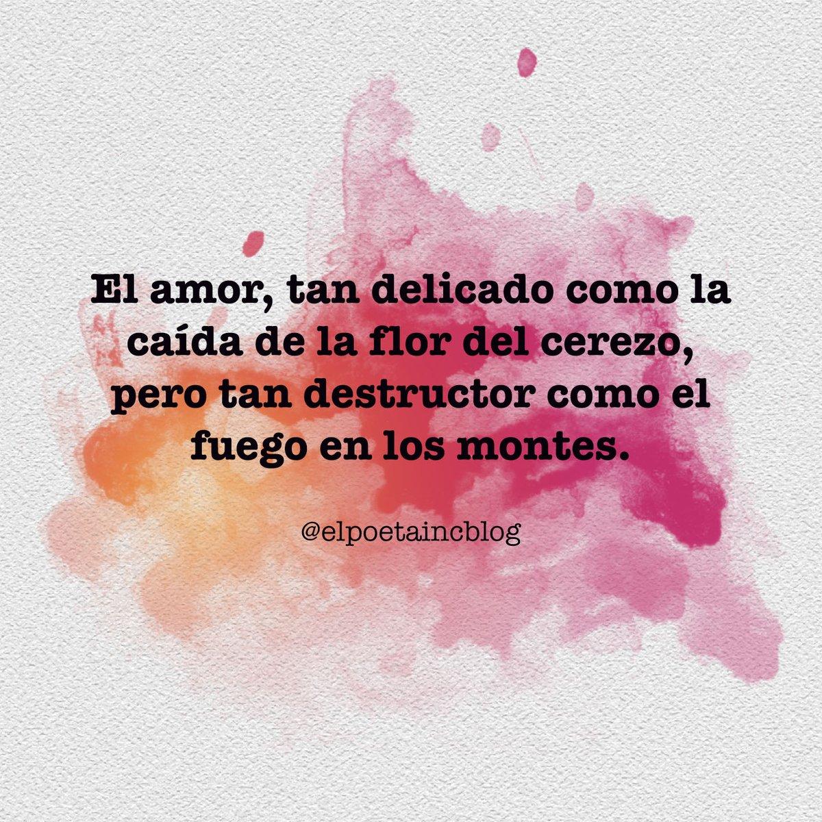 Amor elpoetaincblog elpoetain prendido frases frasesbonitas frasesdeamor MXbKgnf3 hl=es&taken by=elpoetaincblog …