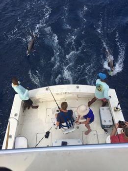 Roatan, Honduras - Capt. Cuny Miller on Captain Action went 2-4 on Blue Marlin, including a triple header. #BillfishADay