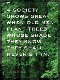 Plant your shady spot today  #gogreen #actonclimate<br>http://pic.twitter.com/j0o77RH2AZ