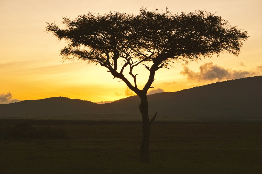 That perfect sunrise in #Kenya...this place is special, has a special place in my heart. #LuxuryTravel #MasaiMara #Safari #FairmontSafari <br>http://pic.twitter.com/sT7OnWAZMA