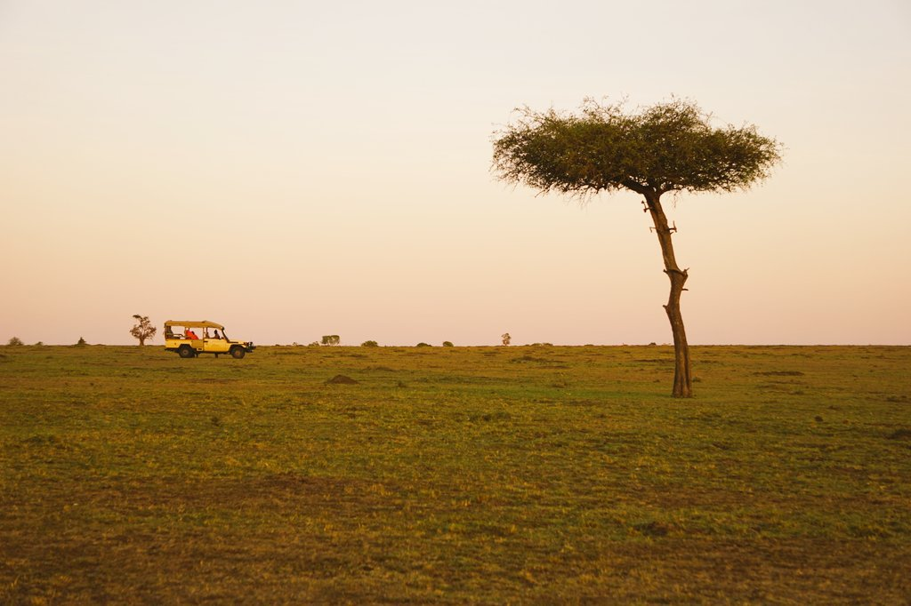 Another shot from this morning, during the sunrise, on #Safari with @MaraFairmont in #MaasaiMara. #LuxuryTravel #Kenya #FairmontSafari <br>http://pic.twitter.com/k8bsV9qMcp