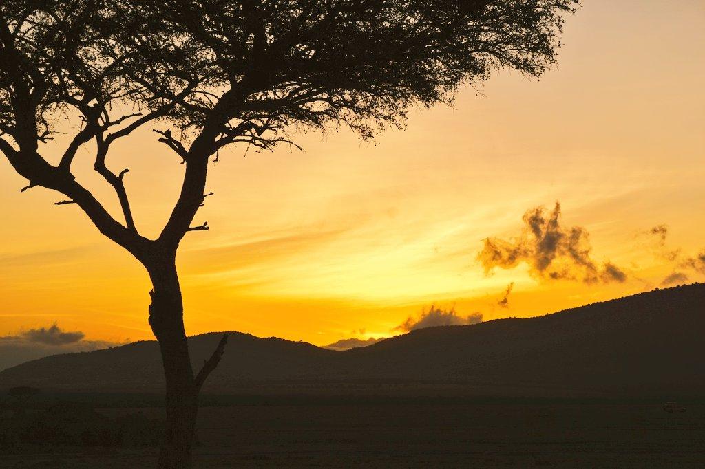 Just before the sun popped up this morning. #LuxuryTravel #MaasaiMara #Kenya #FairmontSafari #Safari <br>http://pic.twitter.com/AyltGgRX2c