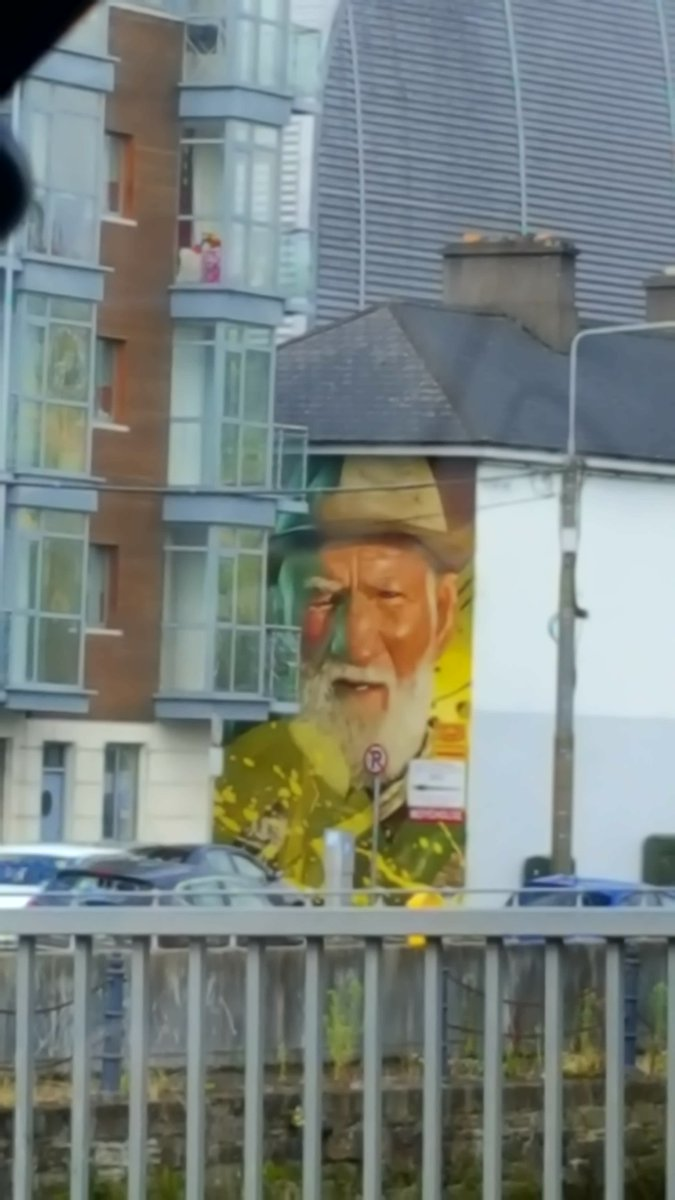 Such a joy to see this as you&#39;re coming across the bridge! #Amazing! #ARCY #WaterfordWalls #StreetArt @WaterfordIYP @WaterfordWalls<br>http://pic.twitter.com/MQgtATiW2D