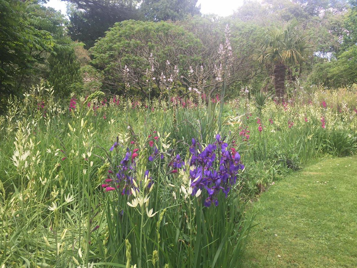 A good time to visit the Botanical Garden #RoyalVictoriaPark #Bath... <br>http://pic.twitter.com/jmte1pqSbr