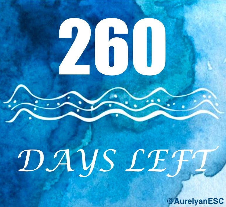 #Eurovision Countdown: 260 days left! <br>http://pic.twitter.com/l74oNX5ZHj