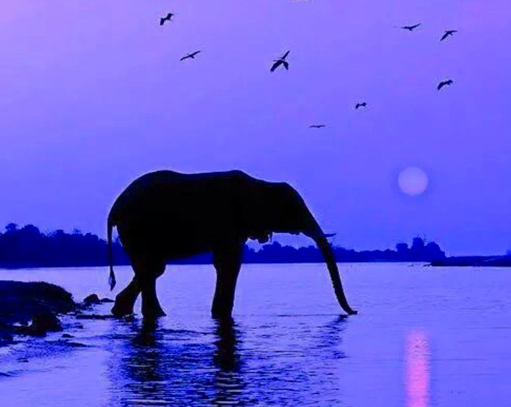 I appreciate your responses to my tweets &amp; lovely #pics. Hope your weekend is going well  Pic via @MaryanPM @Bvweir<br>http://pic.twitter.com/iR4Yz8lFhO