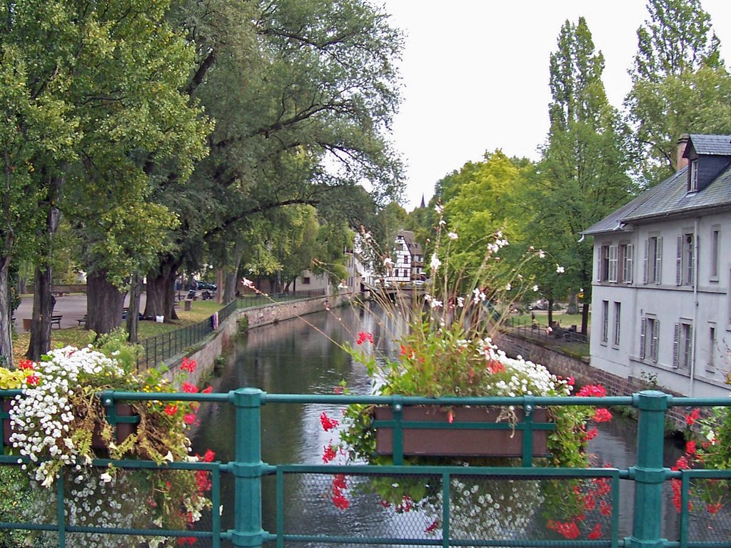 Stunning #Strasbourg - where Gastronomy &amp; Charm Reign  http://www. thepariseffect.net/blog/prince-ch arming-in-strasbourg &nbsp; …  #TheParisEffect #France #wine #Alsace #travel<br>http://pic.twitter.com/GV1g5eQLl1
