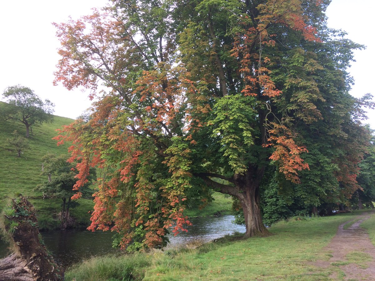 Beautiful #Burnsall, #WestYorkshire <br>http://pic.twitter.com/R4maBcdczh