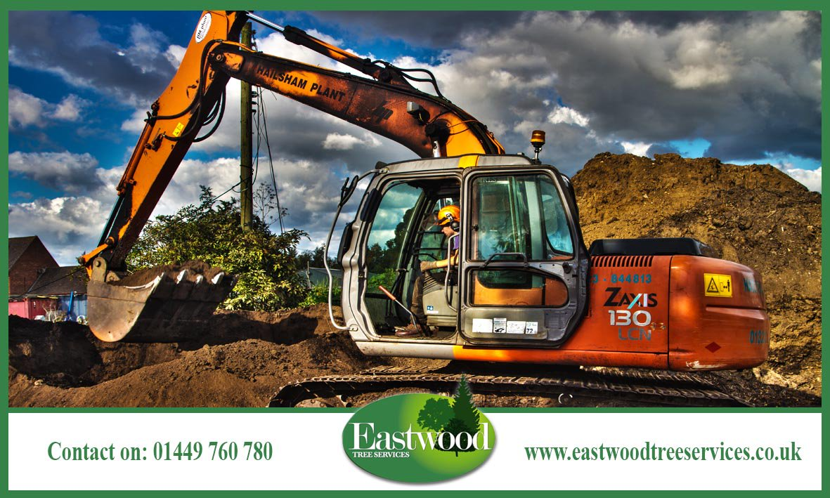Click here to view our portfolio &gt;&gt;&gt;  http:// bit.ly/EastwoodTreeSe rvicesGallery &nbsp; …  #Eastwood #TreeSurgery #TreeSurgeon<br>http://pic.twitter.com/gQ7qMX21hM