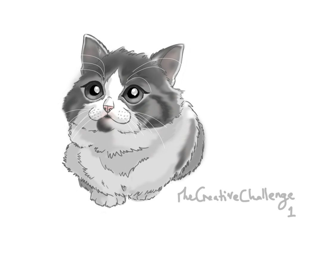 Starting to do daily sketches when wrists are doing well. Practice makes perfect and here is the first of many. #sketch #kitten #practice<br>http://pic.twitter.com/YYv6r1jUSM