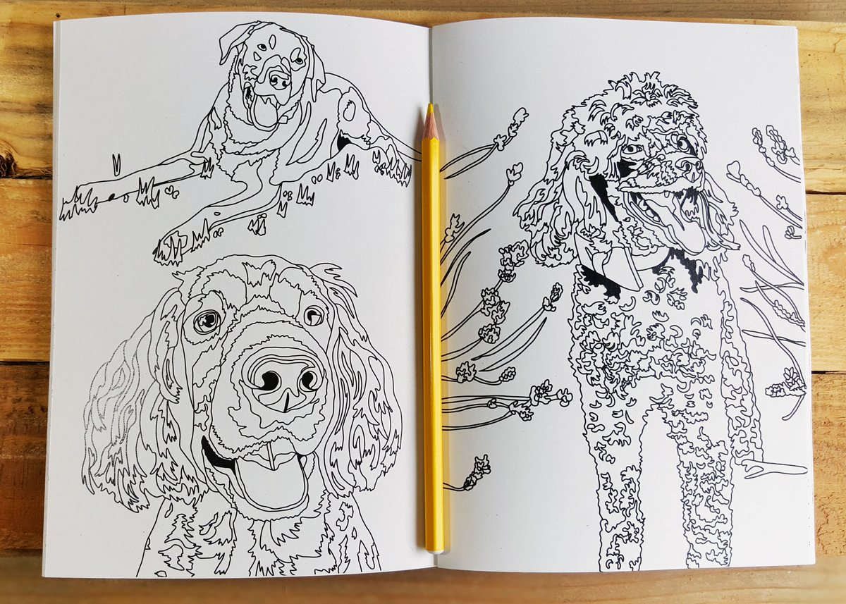 Relax at #home this #summer with some dog colouring fun!  https://www. giddingsgifts.com/product/dog-co louring-book/ &nbsp; …   #crafthour #ladiescoffeehour #womaninbizhour #oxfordetsy<br>http://pic.twitter.com/KOEiaxmYsY