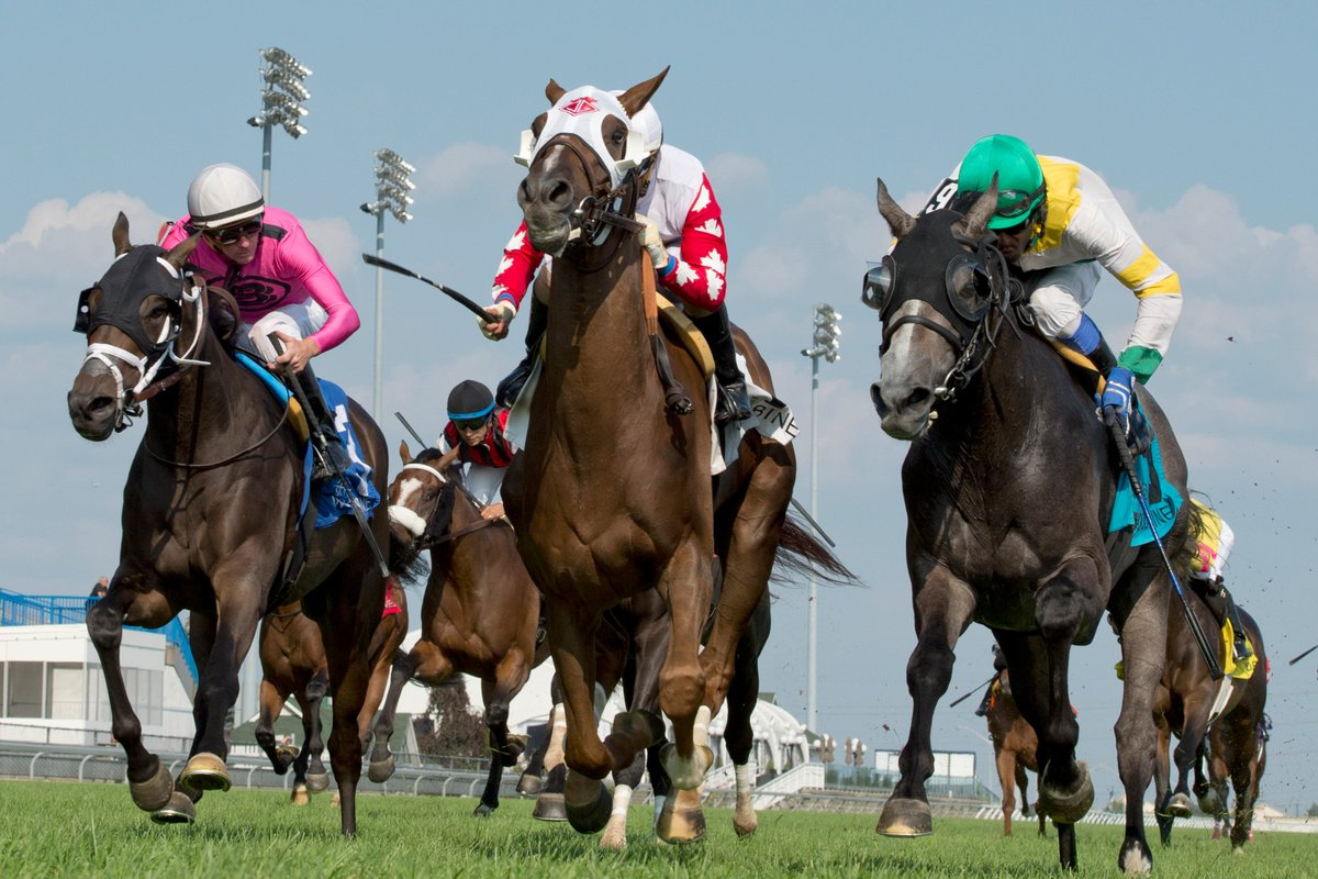 Channel Maker prevails in a Breeders' Stakes thriller https://t.co/44p...
