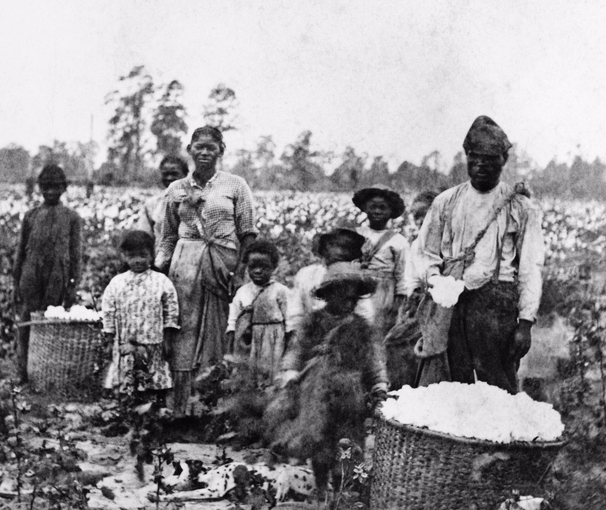 elkins slavery