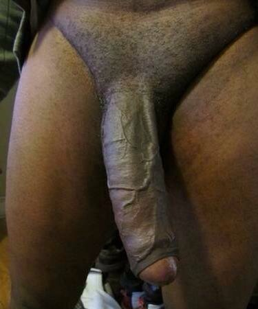 huge gay cock darwin brothel