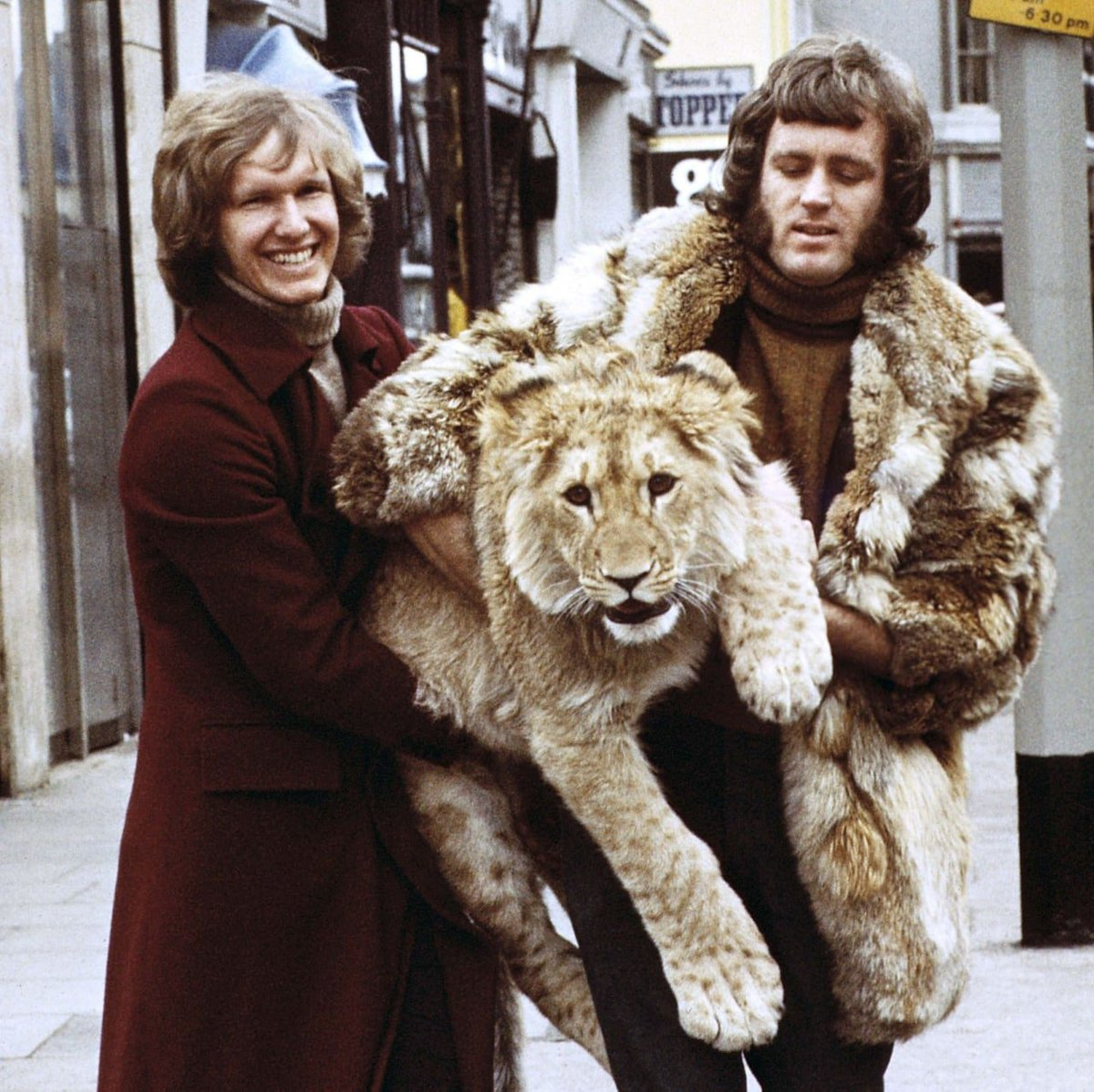 Remember Christian the lion from the reunion video? The Chelsea flat where he grew up is on the market https://t.co/2TIaGFxrEh