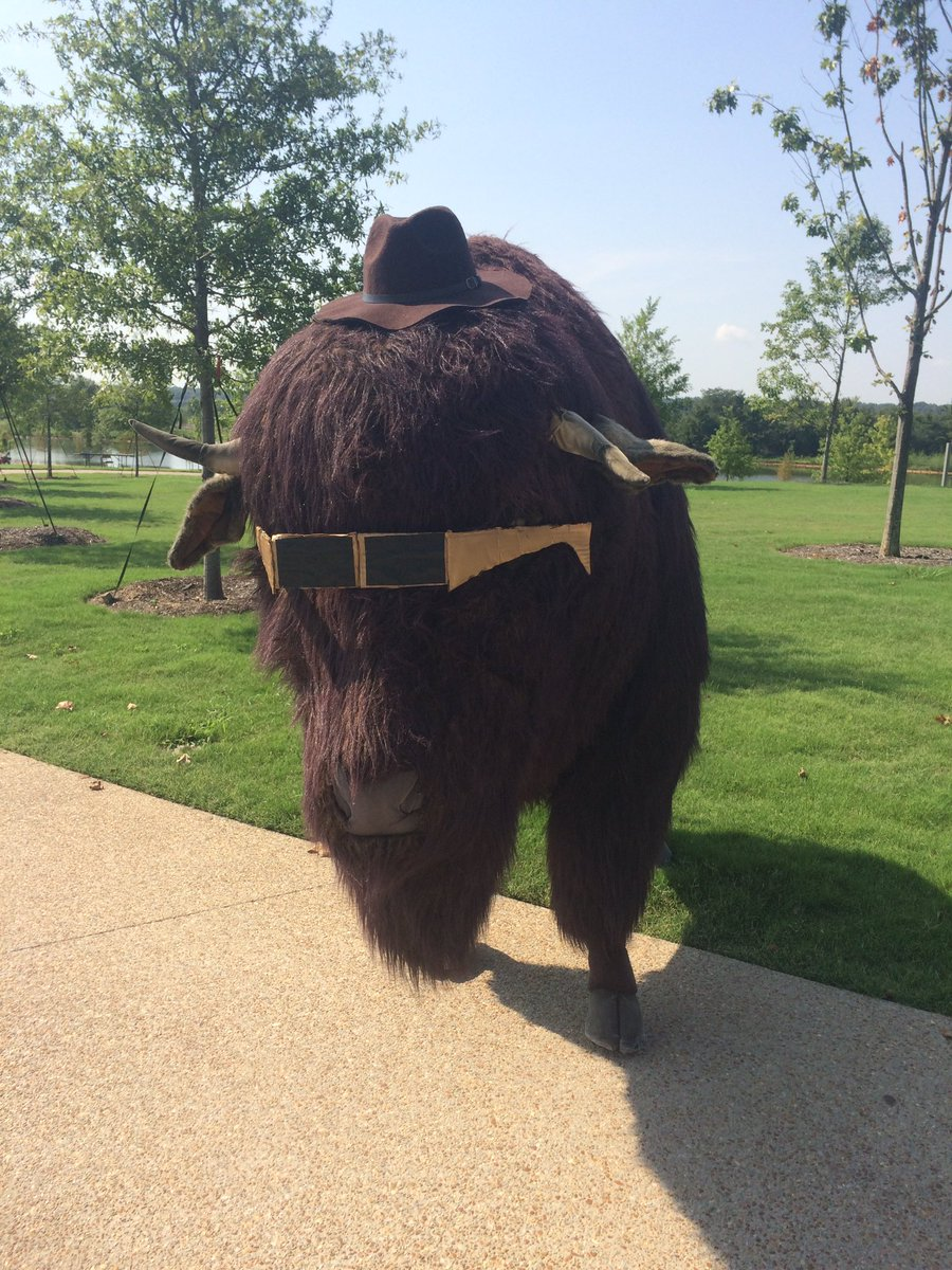 Bob the Buffalo is ready for the eclipse! https://t.co/ou1M8bjgVc