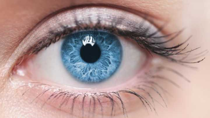 New #research #shows that #people with #blue #eyes have a #single #common #ancestor  http:// debuglies.com/2017/08/21/new -research-shows-that-people-with-blue-eyes-have-single-common-ancestor/ &nbsp; …  via @debugliesnews #news<br>http://pic.twitter.com/k1pqZp3L8D