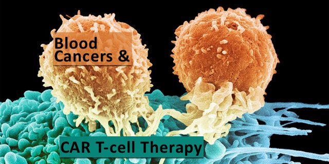 #Childhoodcancer #leukemia #CML Great news on impt #immunotherapy #treatment to be approved! #VIDEO https://t.co/a7uh6eqLYN