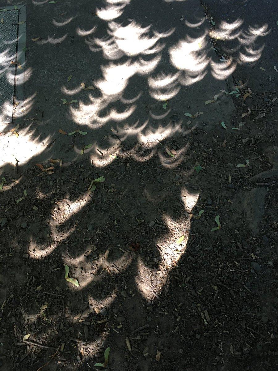 Spooky shadows #EclipseSolar2017 https://t.co/GAJoIieao4