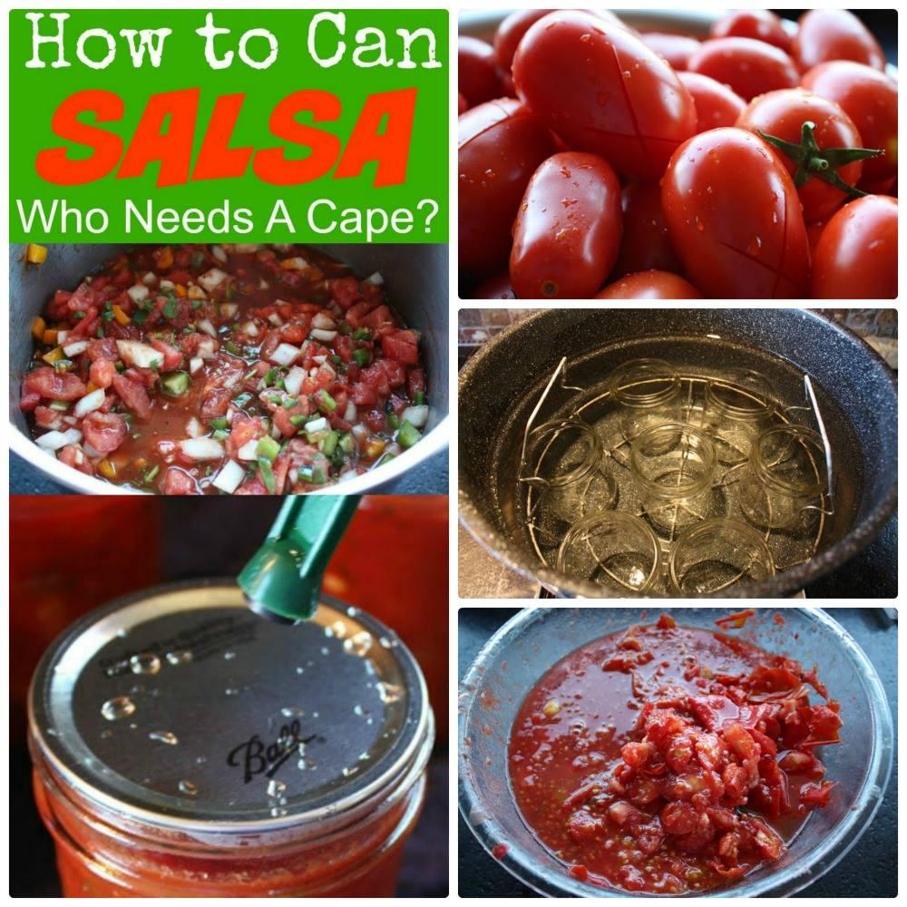 DIY TUTORIAL: How to Can Salsa #diy #tomato #salsa #canning #garden  LINK https:// goo.gl/vWUJZy  &nbsp;   PIN IT https://www. pinterest.com/pin/3964575734 27643951/ &nbsp; … <br>http://pic.twitter.com/sI6eyS9NE2