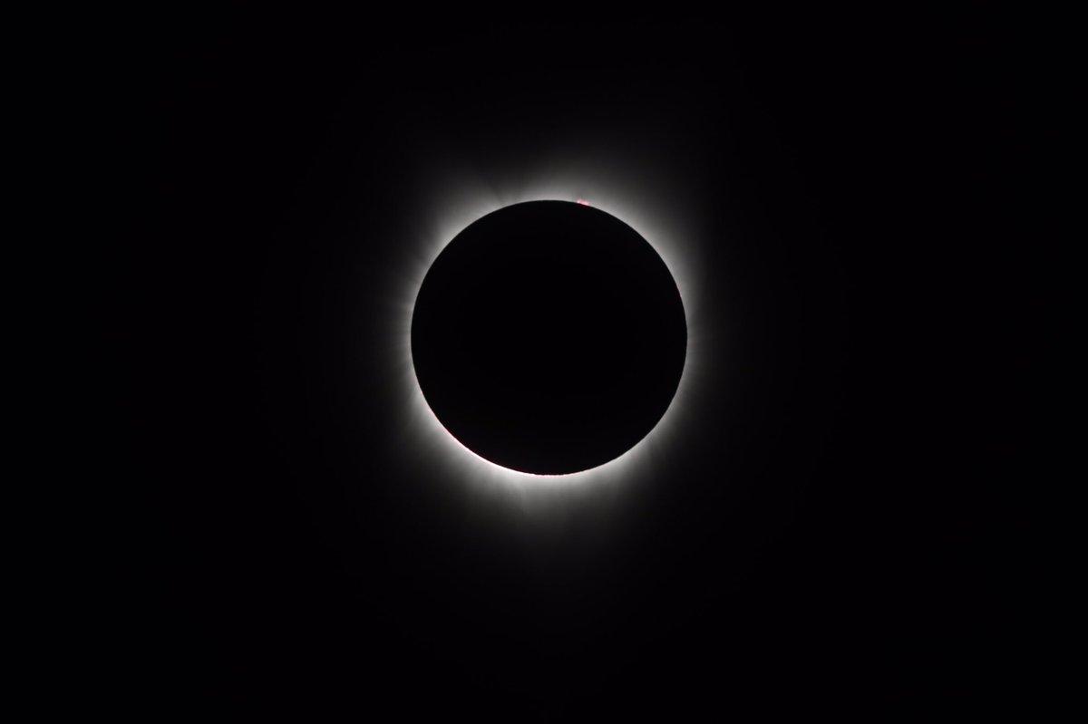 Casper, we have an eclipse! #eclipsetakeover #SolarEclipse2017 #HMNSEclipse https://t.co/bJyt7u1RZO