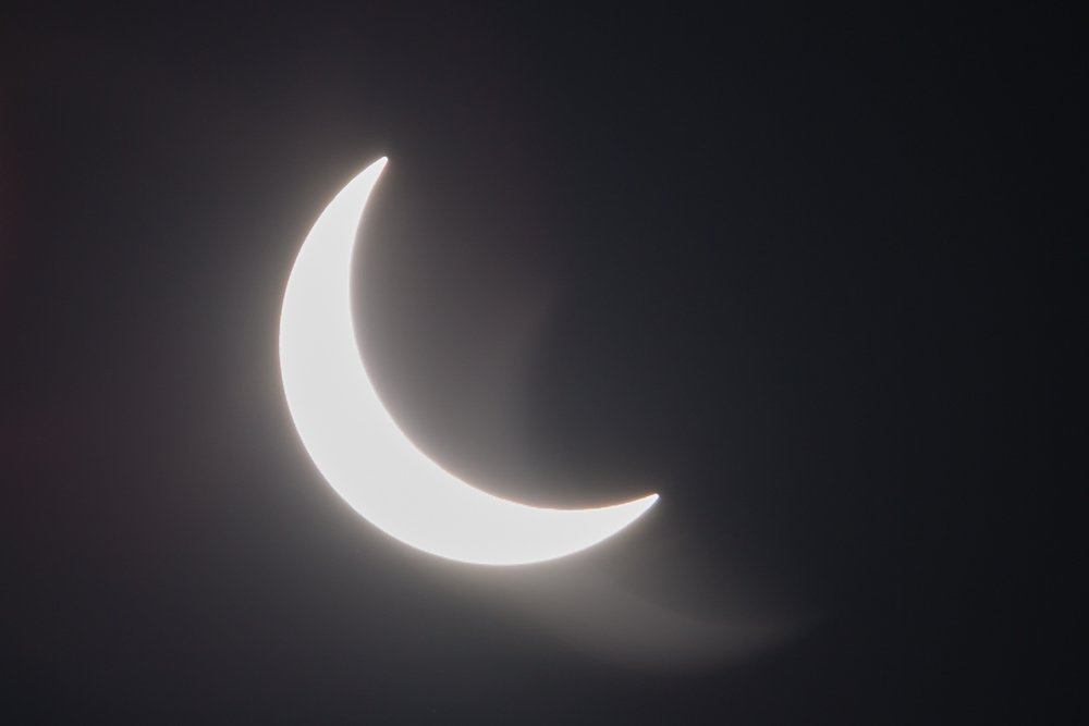 My backyard #Eclipse2017 shot from #Tampa <br>http://pic.twitter.com/H9YPV6NmPe