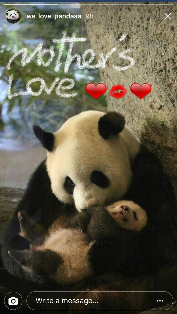 Love mothers