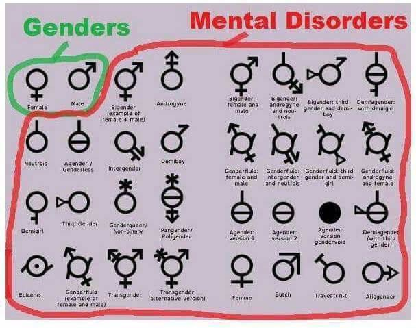 What are all the different genders
