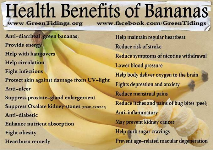 RT Bananas are an effective treatment for diarrhea ➡ https://t.co/J6ehFFlffq https://t.co/aDtVJ8CwHr #health #wellness