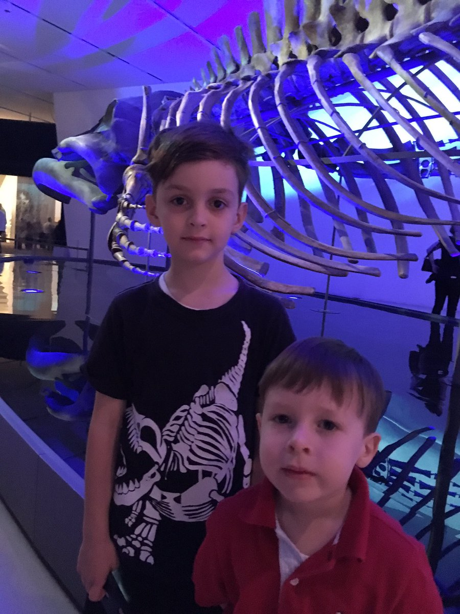 Even though regular visitor @ROMtoronto, @AMNH, @NMNH, @FieldMuseum, my son asked if today was a dream-#ROMBlueWhale now his #1 fav exhibit <br>http://pic.twitter.com/8sH7va3e2B
