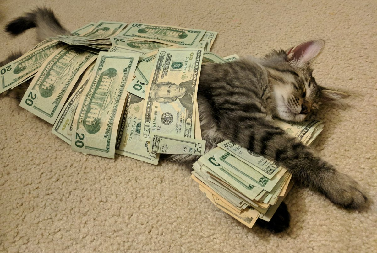 Картинки веселые про деньги, надписями