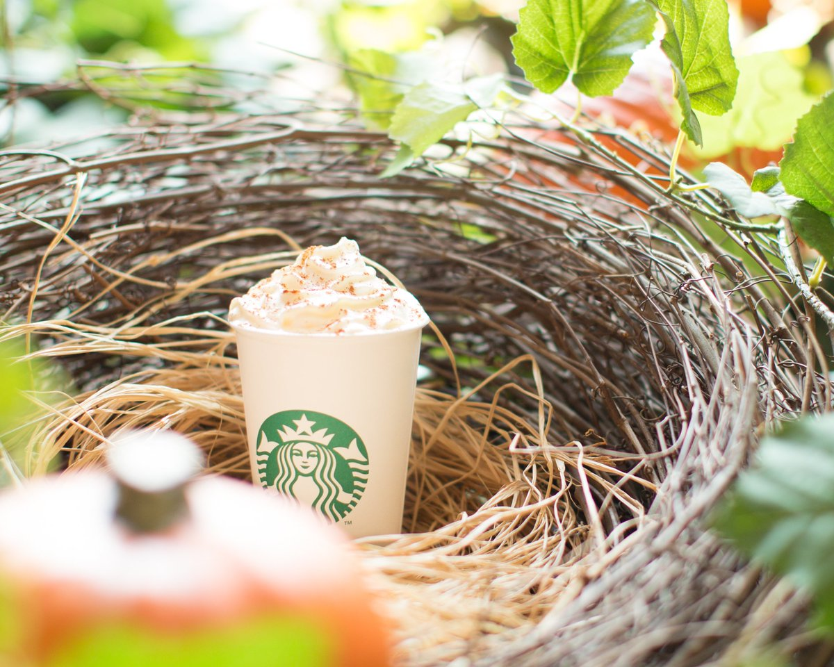 🎃🍂✨ PSL IS HERE! ✨🍂🎃