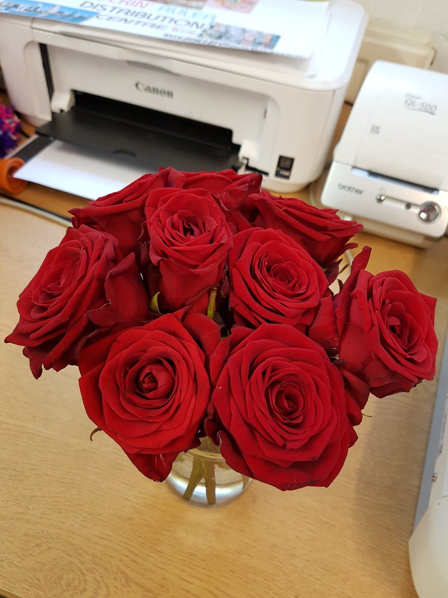 """rockin' ruler on twitter: """"our lovely roses taking pride of place on"""