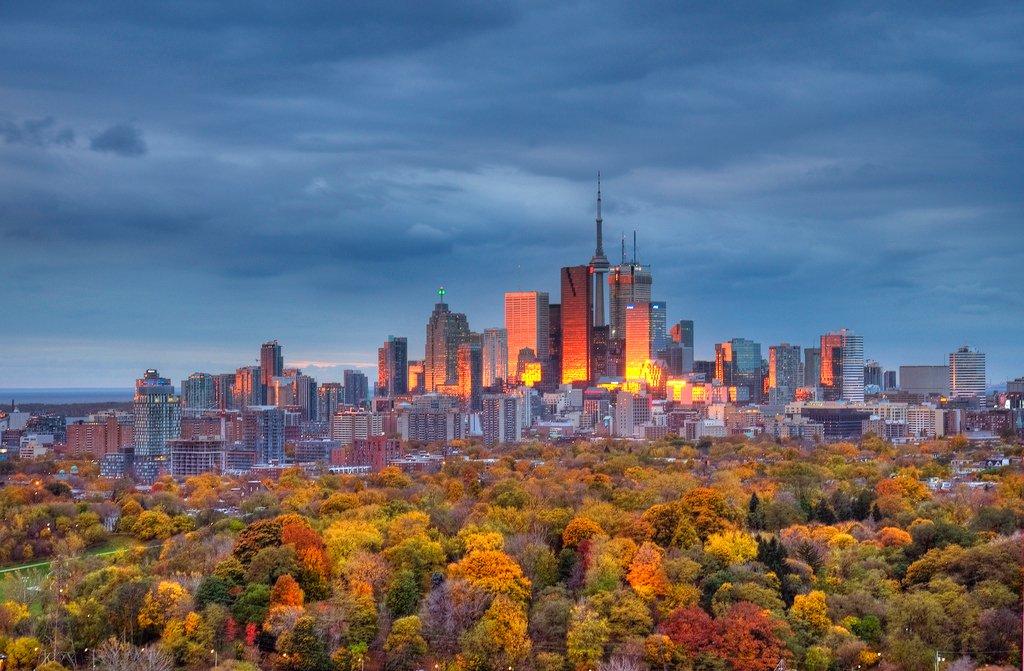 первое город торонто канада фото значение карт, отзывы
