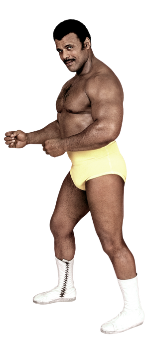 "Happy Birthday ""Soul Man\"" Rocky Johnson"