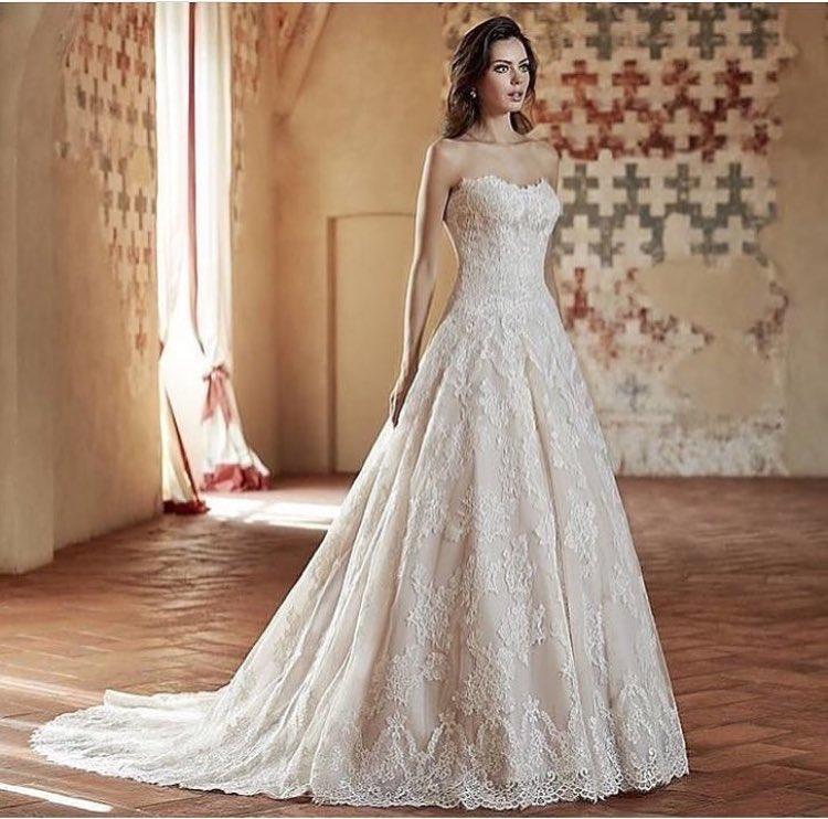 شارك معانا بفستان خطوبة او زفاف على ذوقك  - صفحة 3 DIAFv4dXoAQOy4l
