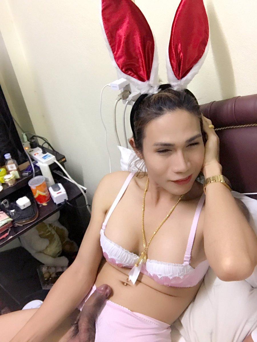 Free Asian Ladyboy