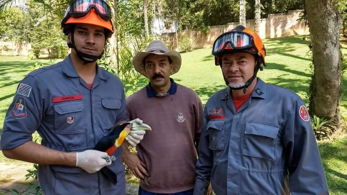 Os bombeiros do 4º GB, 1º Sgt Claudio, Cb Domingos e ao Sd Joabson,que receberam a solicitação para captura e salvamento de um Tucano.
