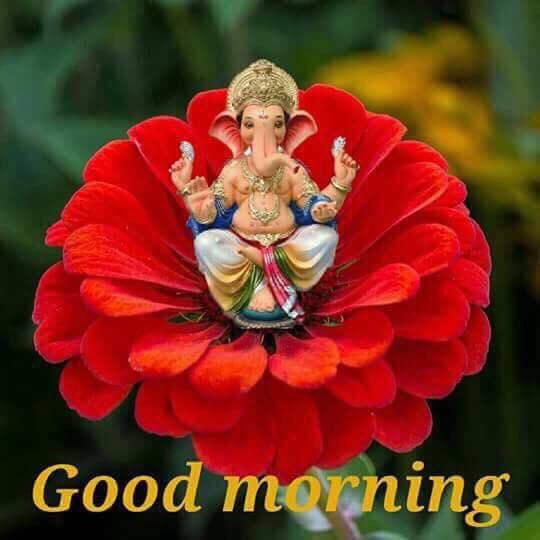 Virender Kahrana On Twitter Hi Friends Good Morning And Happy