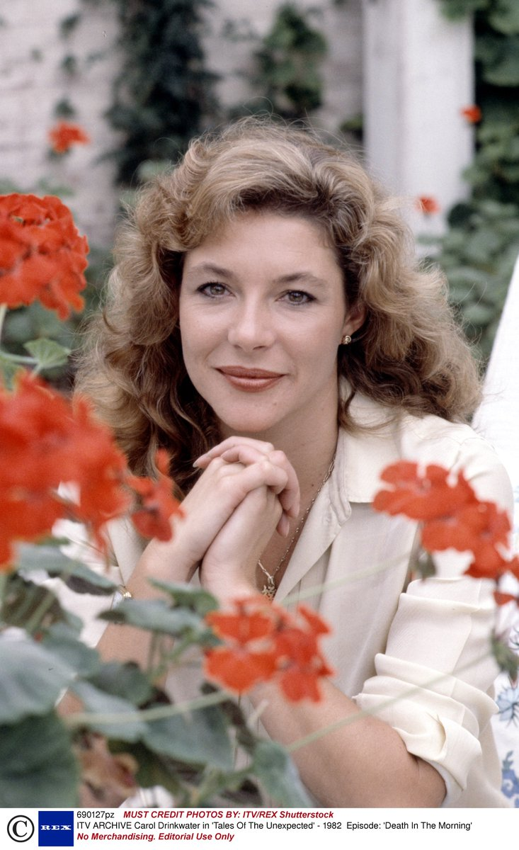 Carol Drinkwater nudes (37 photos), Ass, Is a cute, Selfie, legs 2020