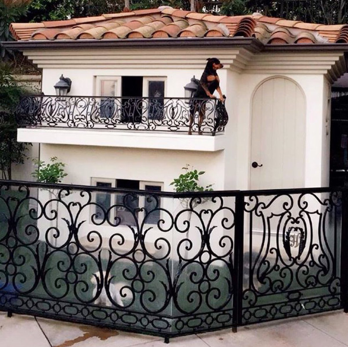 My dogs live in this two-story doggy mansion that has air conditioning, heating, designer furniture, and a chandelier. Loves it