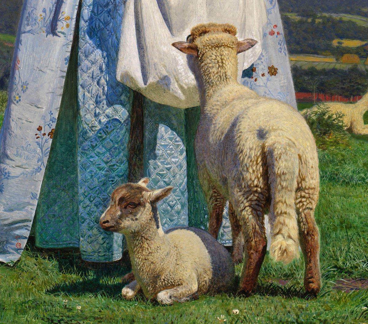 Tranquilla On Twitter Ford Madox Brown Pretty Baa Lambs