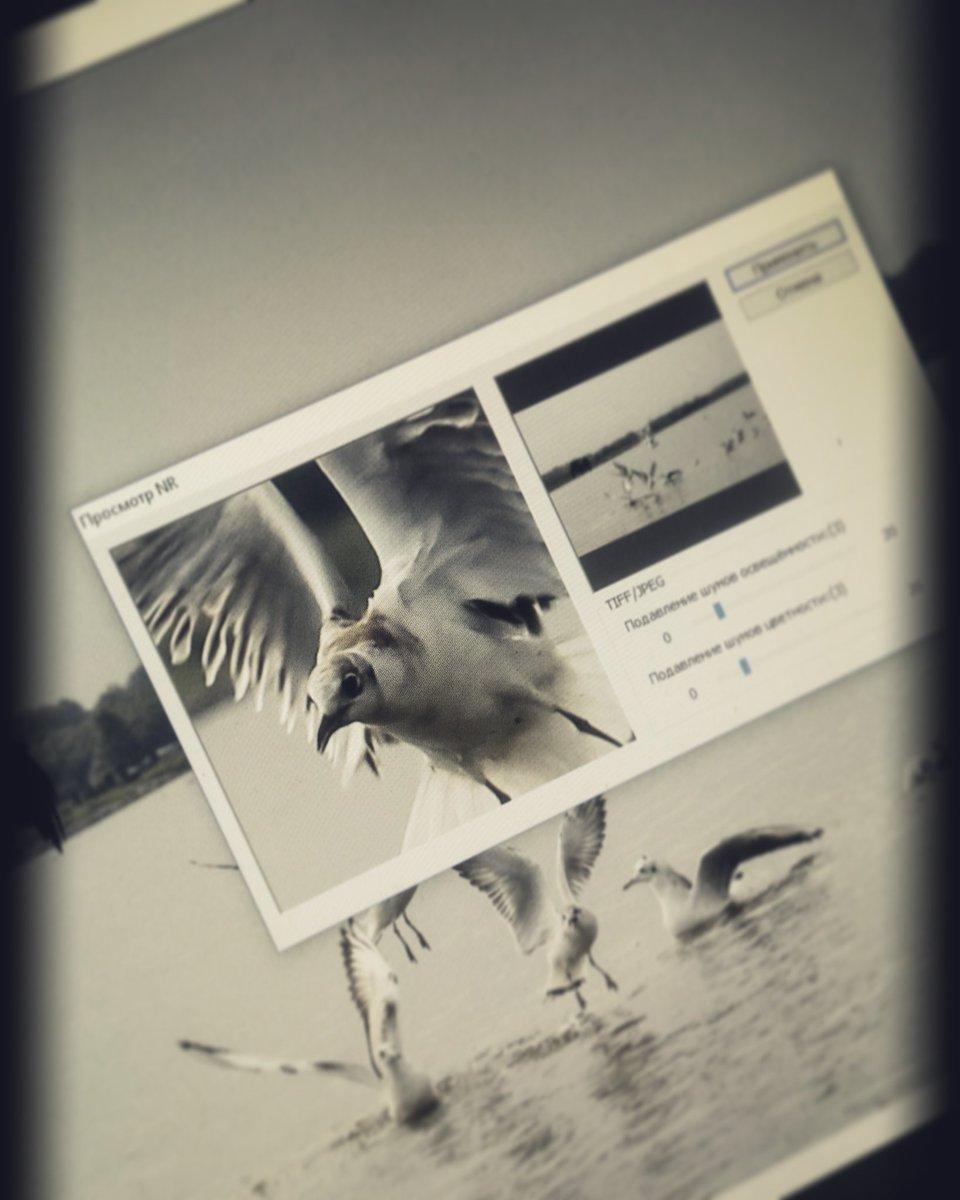 фотошоп для оформления фото онлайн