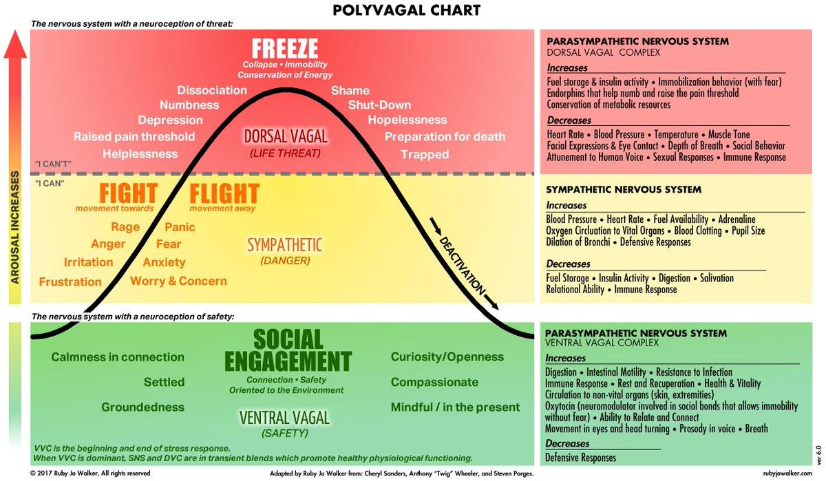 Dan quintana on twitter jamesheathers you ever seen a dan quintana on twitter jamesheathers you ever seen a polyvagal chart before nvjuhfo Choice Image