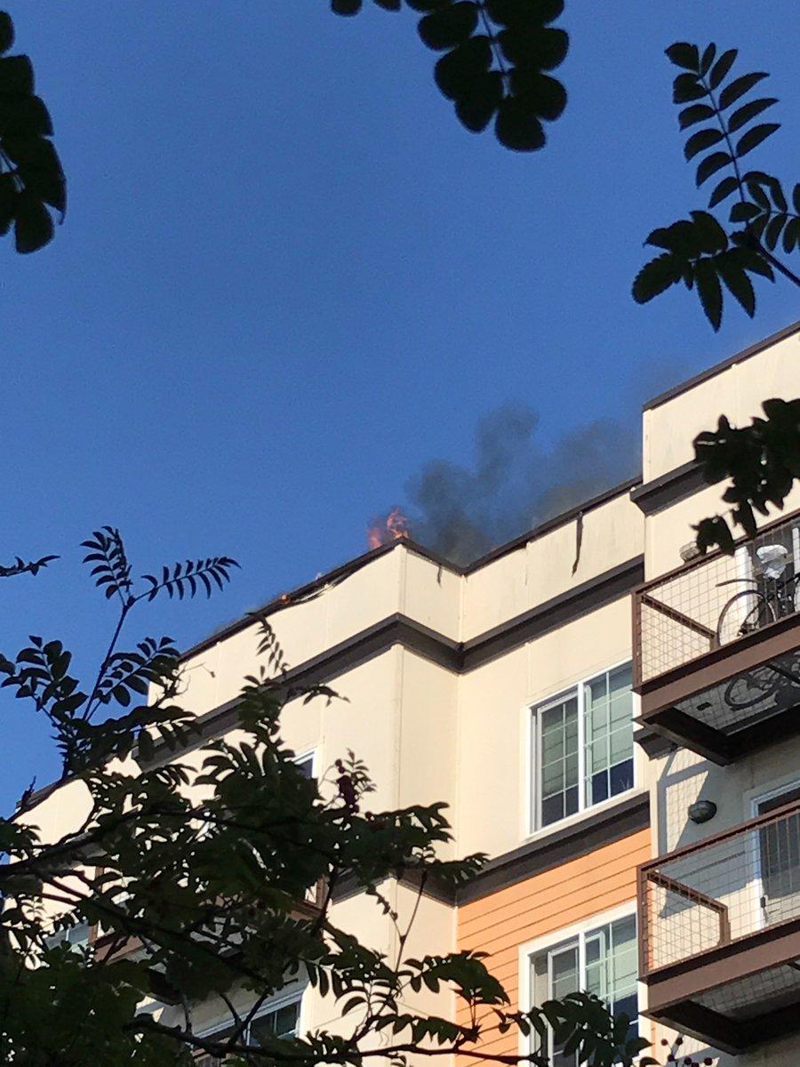 Seattle Fire Dept  on Twitter: